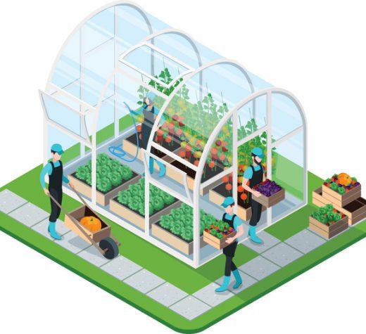 Så förverkligar du drömmen om ett växthus